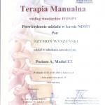 TERAPIA MANUALNA II